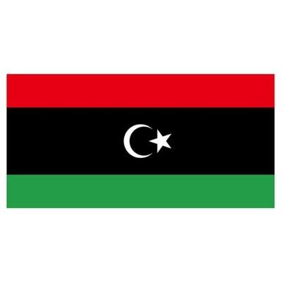 利比亚 | 中央银行颁布,轮胎、医疗用品、厨具、电器等产品需要获得测试报告